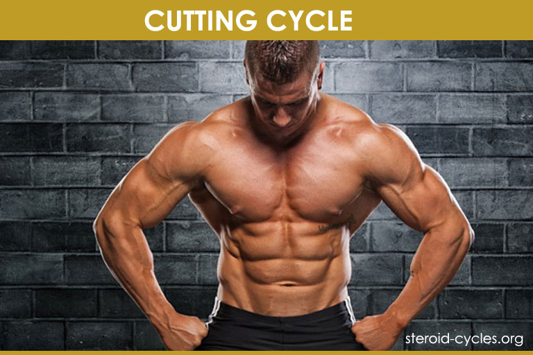 Cutting Cycle Stack: Results, Side Effects & How It Works! [2019]