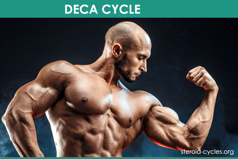 Deca Cycle: Deca-Durabolin Steroids Cycle for Bulking and Cutting [2020]