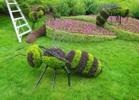 Il giardino degli insetti