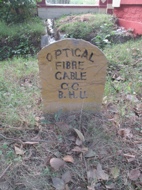 Random photo to fill page: I found the burial site of Australia's fast broadband network.