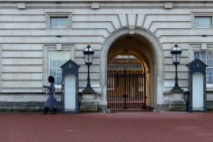 The Buckingham Palace Guards