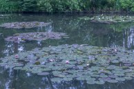 Monet_05