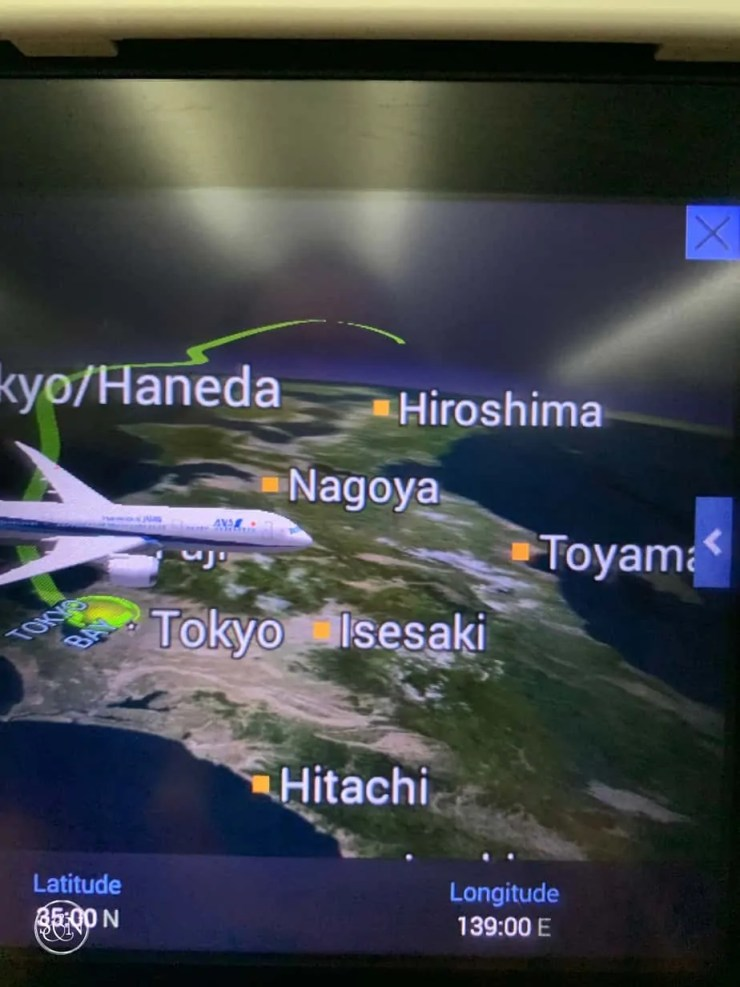 It's a bird!  It's a plane!  It's Hitachi Japan!
