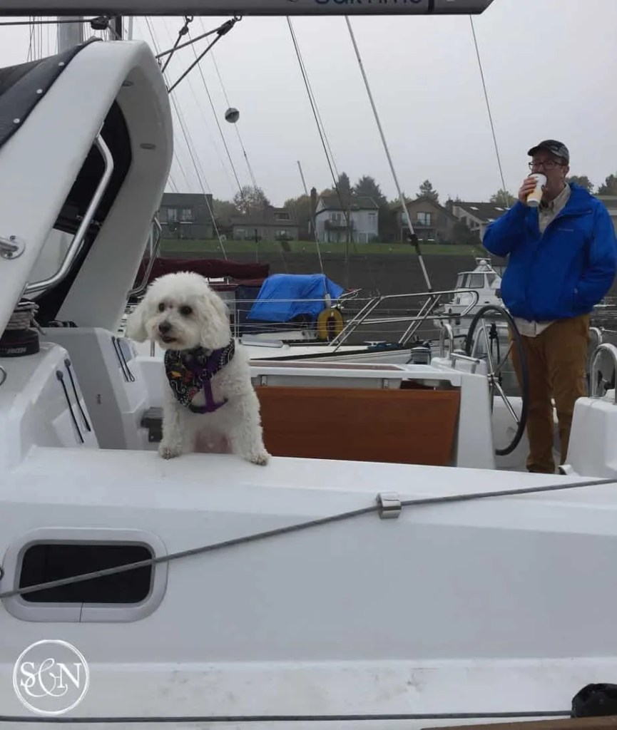Sailing Buddy