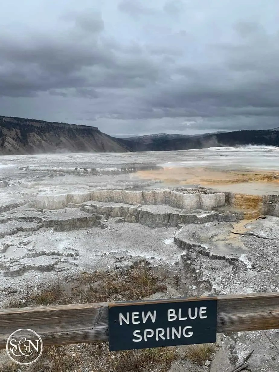 New Blue Spring at Mammoth Hot Springs