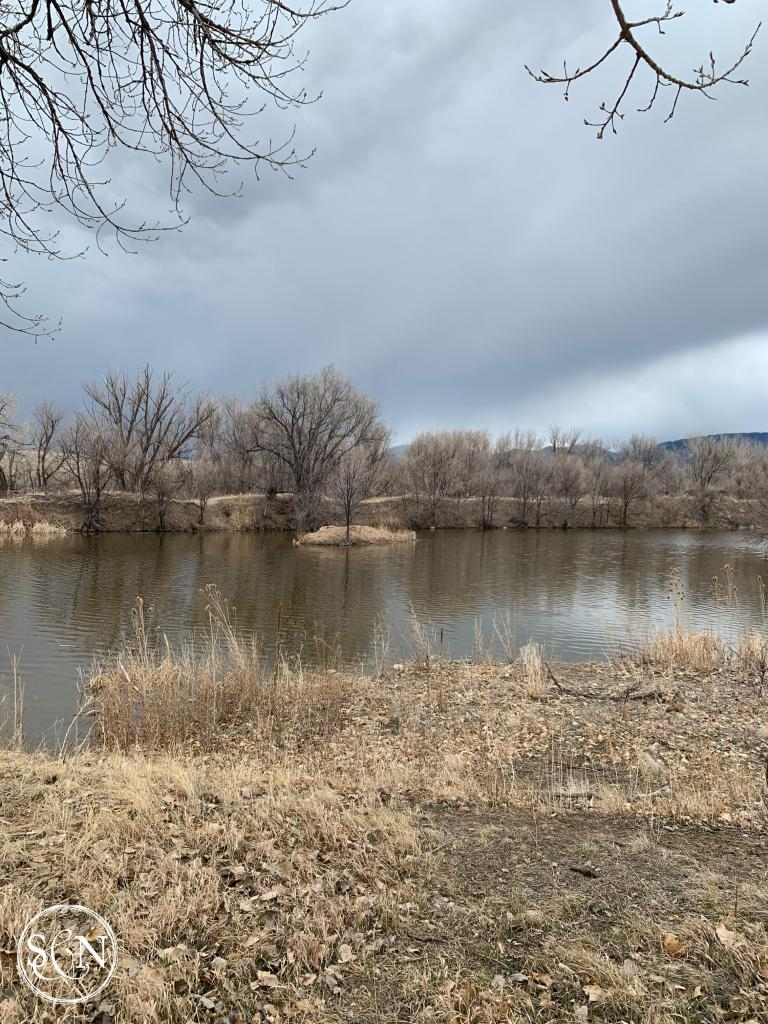 A Willow Springs Fishing Pond