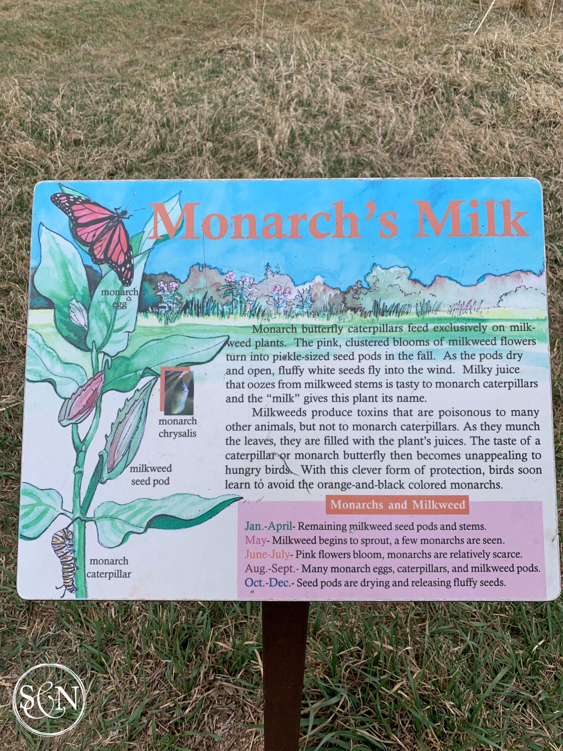 Monarch's Milk
