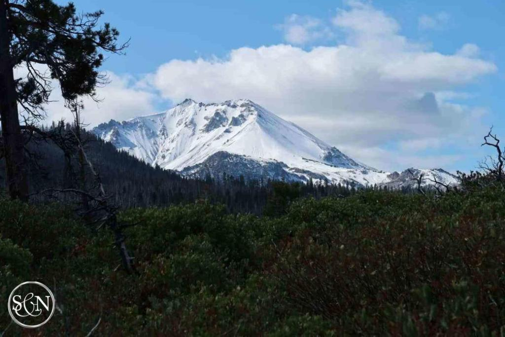 Snowy Mt Shasta