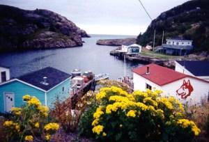 Quidi-Vidi Harbour (not my shot)