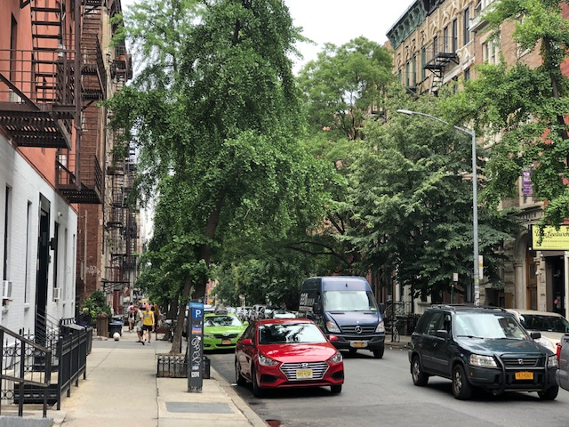 A tree-lined side street