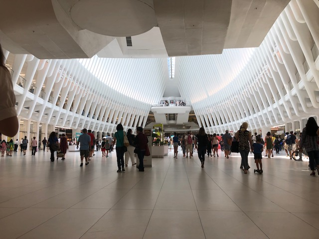 """Inside oculus, showing the ribs of 'the bird"""""""