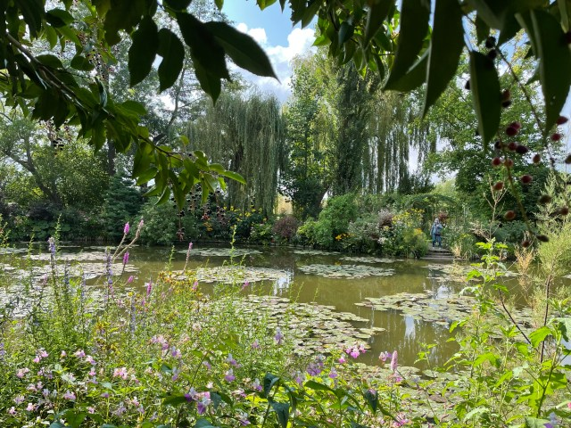lily pond across the center, pink flowers lower foreground, dark green leaves top foreground as a frame