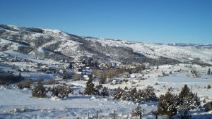 V.C.Winter