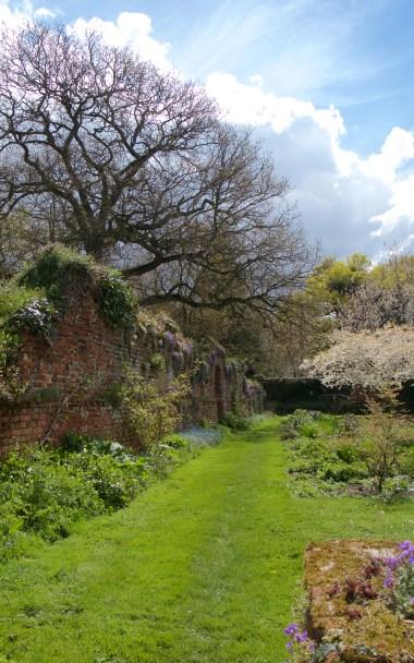 The wonderful Tudor wall