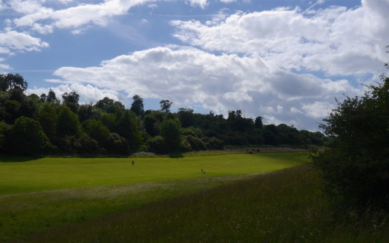 Golf course, ancient woodland and chalk grassland
