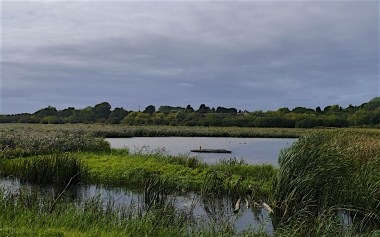 The view from the David Feast hide