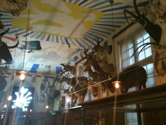 musee-de-la-chasse