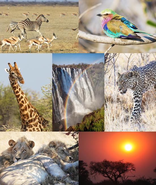 Botswana Victoria Falls photography tour