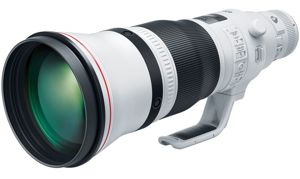 Canon EF 600mm f/4 L IS III USM - Bird Photography