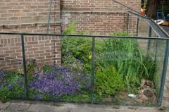 Overvieuw of the outdoor terrarium early summer (june 2009)