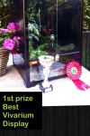 First prize of best vivarium display