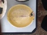 tortoise bowl