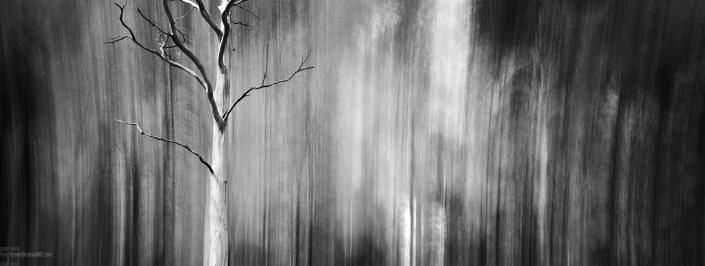 Blur Black & White