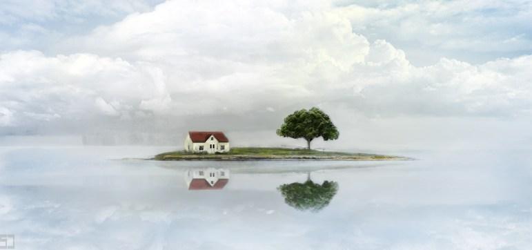 House n a Tree