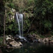 Gold Coast Waterfalls Curtis Falls