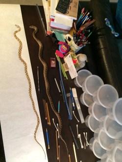 Snake illustration complete