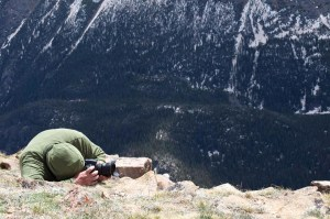 Photographing lichens at Rocky Mountain National Park.