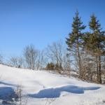 Winter landscape - Steven Kennard 2013