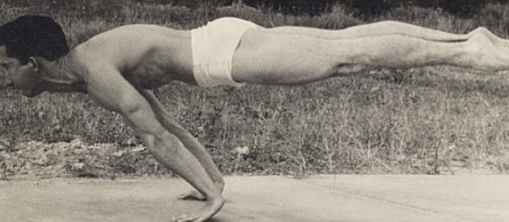 c19c912ff2 The Fundamentals of Bodyweight Strength Training – Steven Low