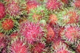 Vibrant rambutan fruit. In the US it's usually brownish and sad looking.