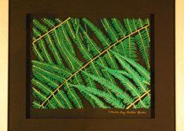 Ferns original 3-D acrylic painting on glass by Steven Ray Miller Durham NC artist