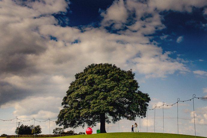 children playing near the tree at Heaton House Farm