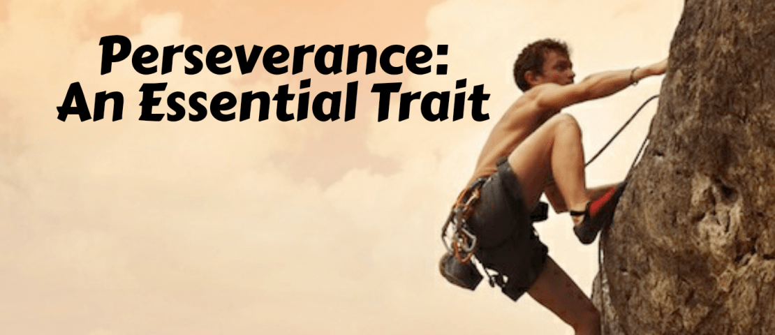 Perseverance: An Essential Trait
