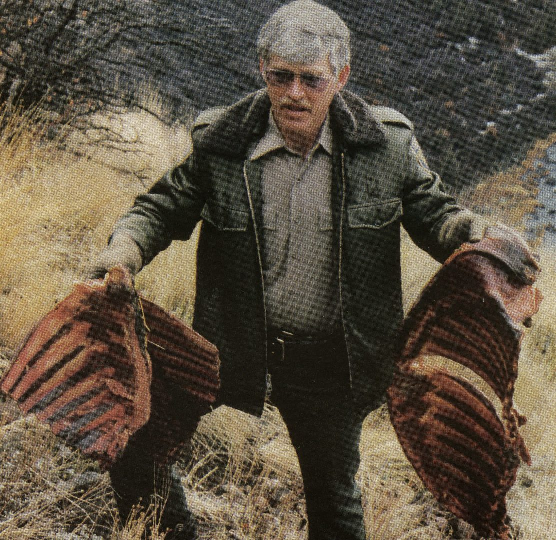 A scene from The Fall River Elk Killings, a chapter in Badges, Bears, and Eagles--The True-Life Adventures of a California Fish and Game Warden