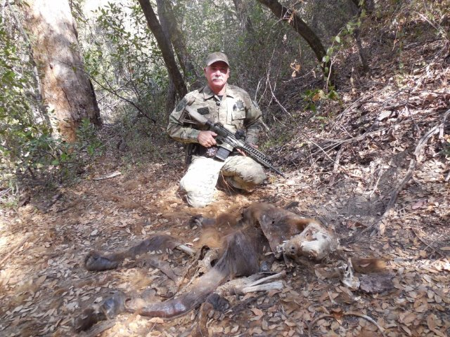 California Department of Fish and Game Warden Jerry Karnow with suspected poisoned bear at an illegal marijuana grow site