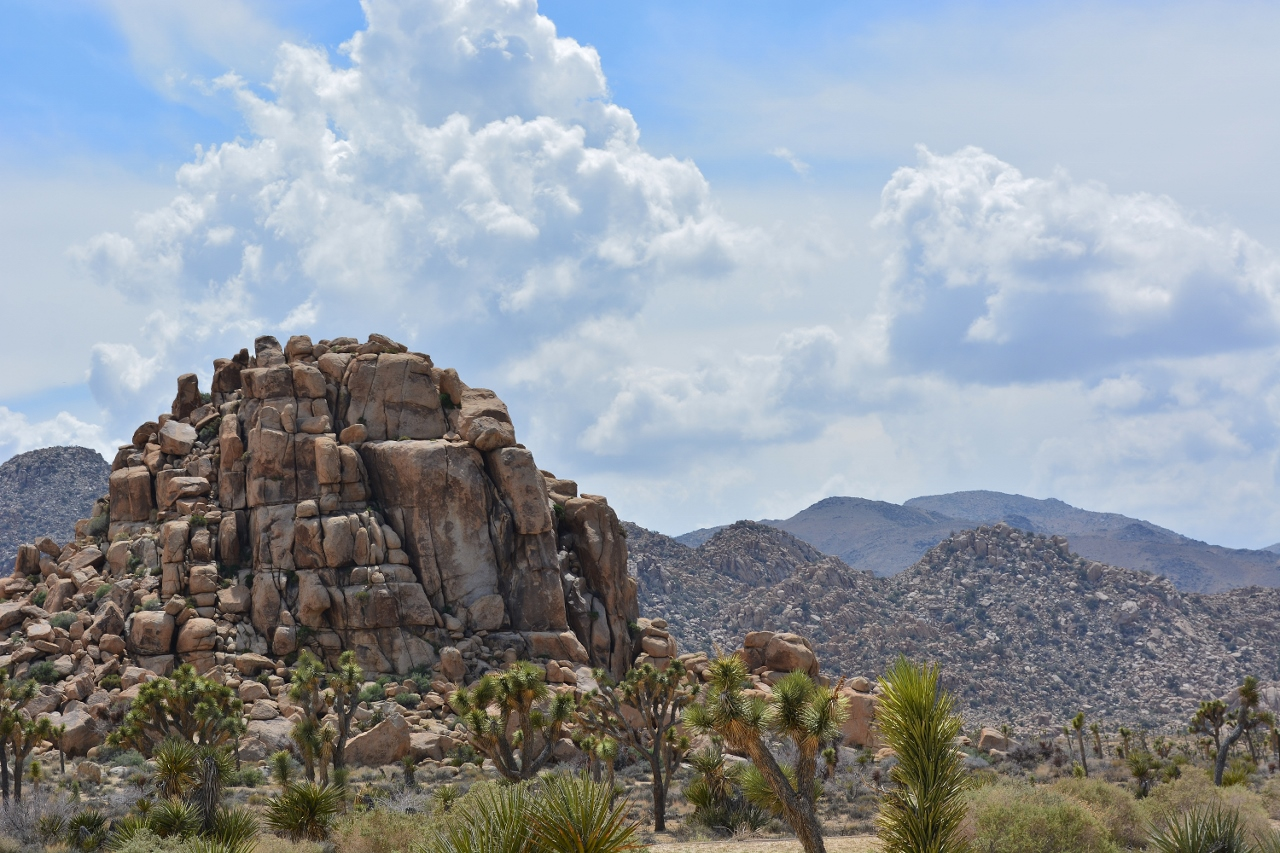Rock formation at Joshua Tree National Park