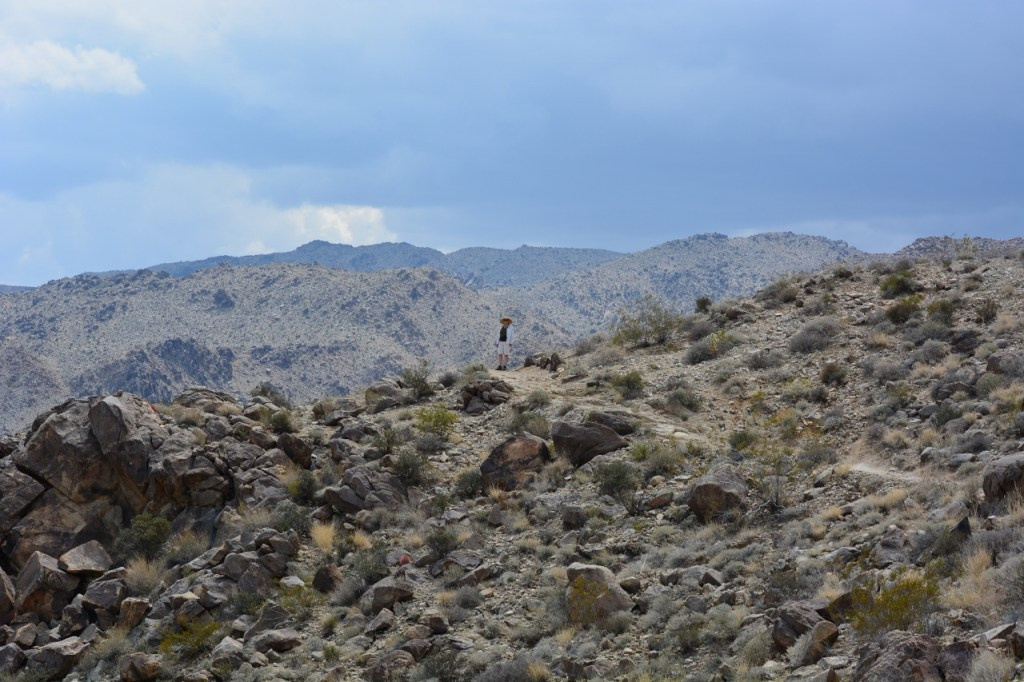Kathy is hiking the trail to 49 Palms Oasis in Joshua Tree National Park.