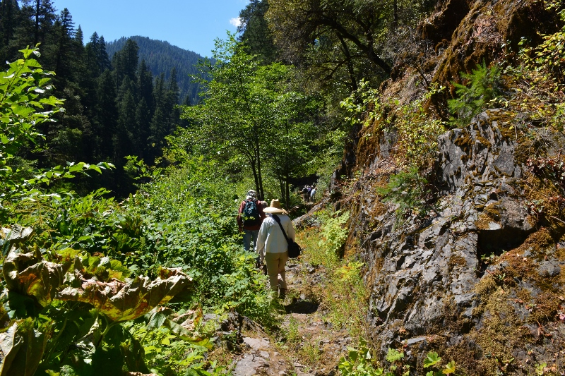 Kathy joins other hikers from the Shasta Land Trust on the banks of the McCloud River. The McCloud River Preserve, operated by the Nature Conservancy, offers miles of hiking trails. Photo by author Steven T. Callan.