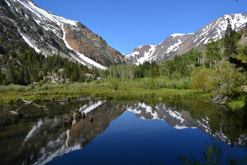 Beaver ponds on Mill Creek, upstream from Lundy Lake. Photo by Steven T. Callan.