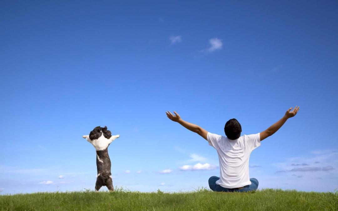 5 Simple Ways to Drop a Negative Attitude