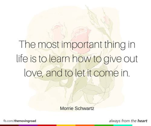 The most important thing in life is to learn how to give out love, and to let it come in. -Morrie Schwartz