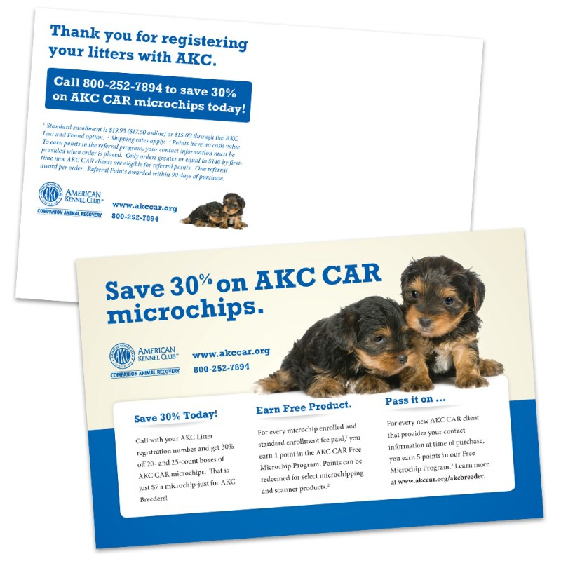 AKC CAR Puppy Postcard