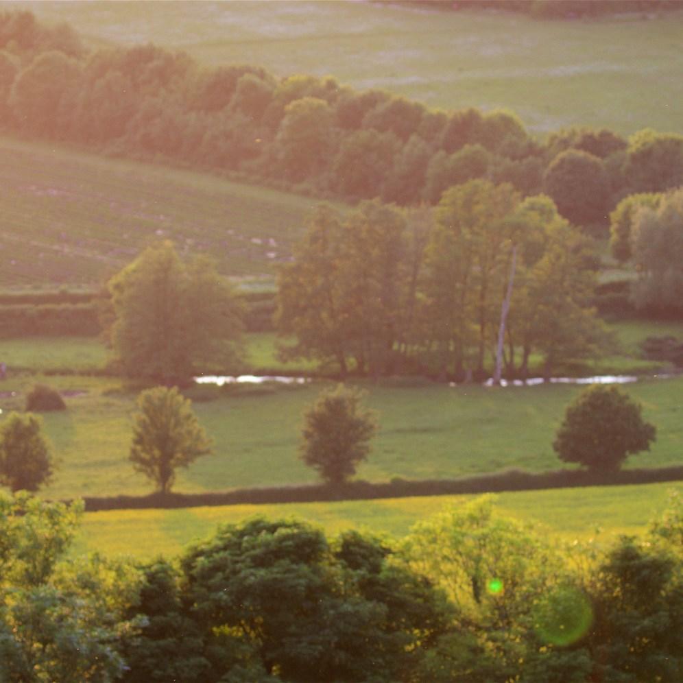 Evening light: the river Darenth