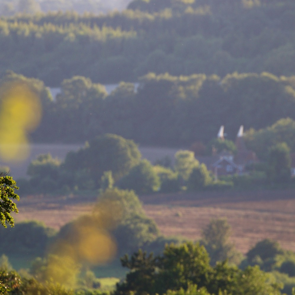 View of the Darenth valley in the late evening
