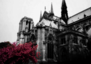 Photo of Notre Dame de Paris, France. | 8-Apr-00.