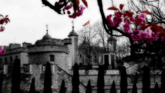 Photo of springtime at the Tower of London.   15-Apr-00.